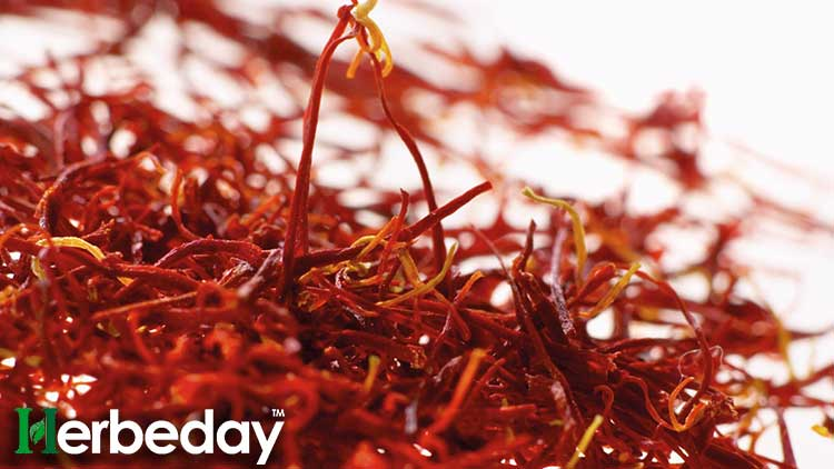 Why Saffron Price is Precious