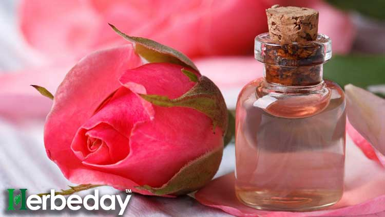 aromatic rose water